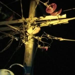 kukang di kabel listrik